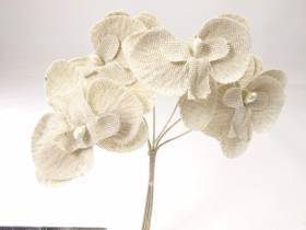Orchidée simple - Lin