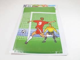 Guirlande 8 pavillons - Football