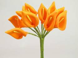 Arum - Mandarine