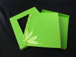 Livre d'or en papier mâché - Vert Tilleul