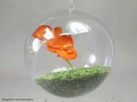 Boule en plastique - Transparent Ø14cm