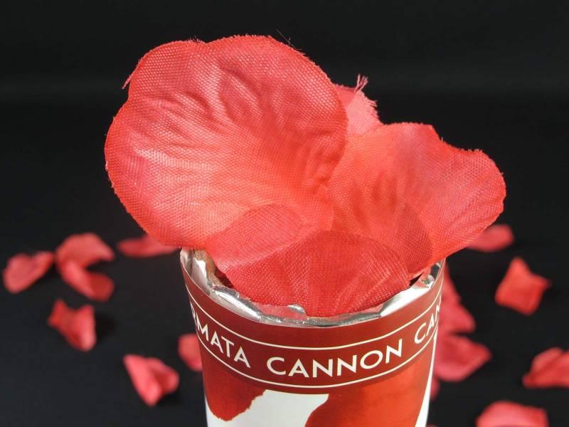 Canon pétale de rose - Rouge