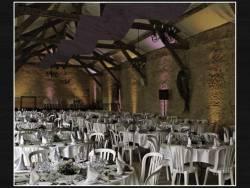 Tenture élégance - Bordeaux