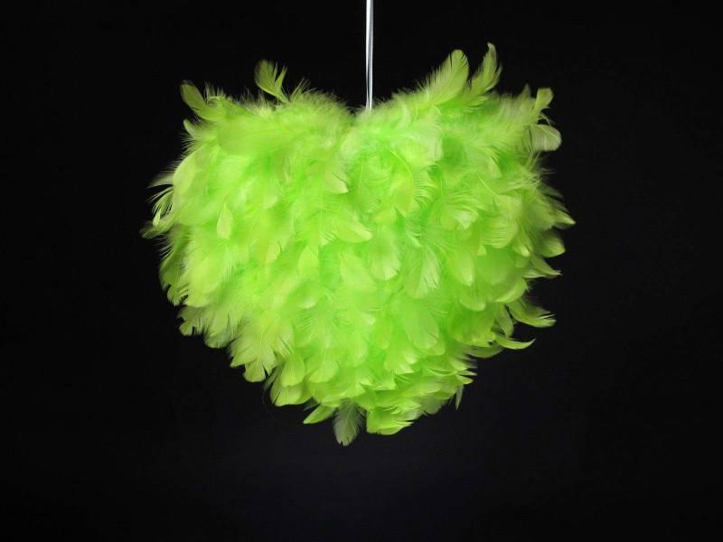 Coeur plume - Vert Lime