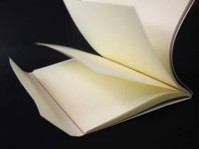 Livre d'or mariage et anniversaire bleu à pois - 60 pages