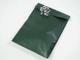 Pochette kraft brun grand format x50 - Vert Forêt