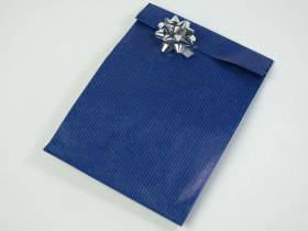 Pochette kraft brun grand format x250 - Bleu