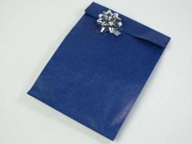 Pochette kraft brun grand format x50- Bleu