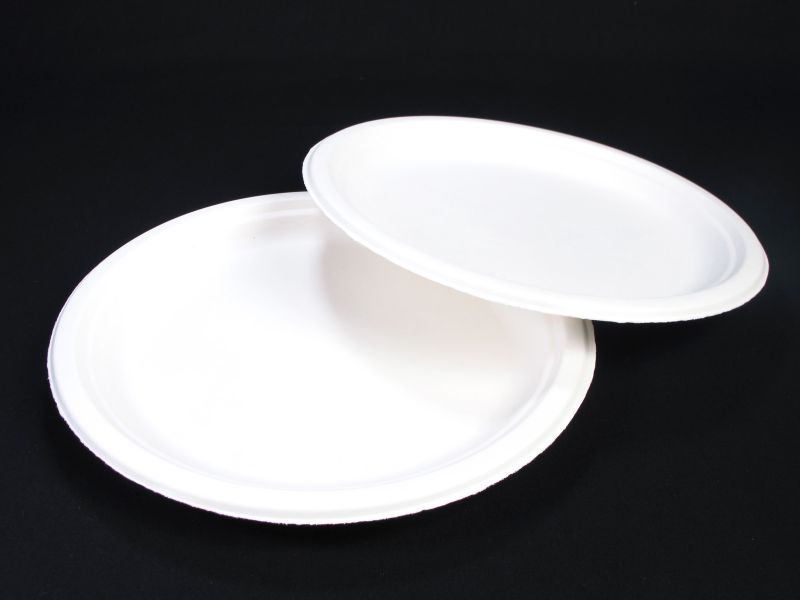 Assiette compostable canne à sucre prémium Ø23cm