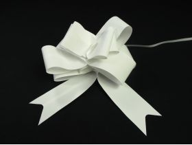 Noeud papillon déco mariage 12cm – Lisse Blanc