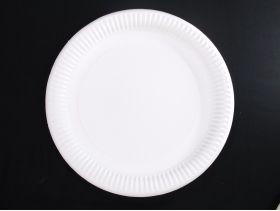 Assiette carton ronde extra fort biodégradable Ø26cm x50 blanc