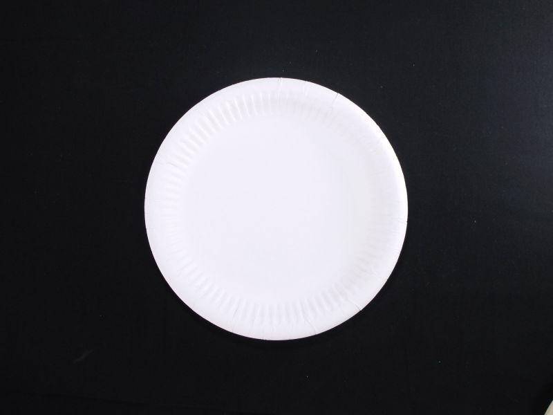 Assiette carton ronde biodégradable Ø20cm x100 blanc